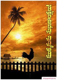 Sankranti Greeting 13 Telugu Greeting Cards Telugu Wishes Messages Happy Sankranti, Beach Heart, Wedding Greetings, Wishes Messages, Good Morning Images, Telugu, Greeting Cards, Animation, My Favorite Things