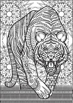 creative haven untamed designs colouring book page 7 of 7