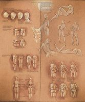 .Female Gesture Pose References. by *sakimichan on deviantART - site with links to gesture poses