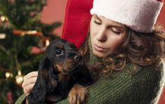 7 Ideas on How to Spend Christmas with Your Dog