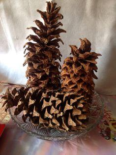 Piñas gigantes, sobre un Platón de vidrio; para centro de mesa se ve genial !!  Giant pine cones on a glass Plato; for centerpiece looks great !!