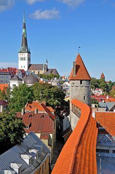 Estonia_1573 - Tower Top