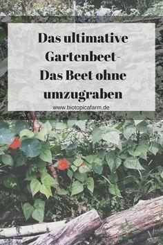 120 besten garten start bilder auf pinterest in 2018 garden tool storage plants und backyard. Black Bedroom Furniture Sets. Home Design Ideas