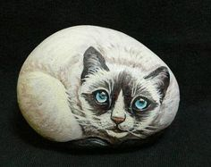 CANLI GİBİ – 10marifet.org....pretty kitty!