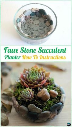 DIY Faux Stone Succulent Planter Mini Garden Instruction DIY Indoor Succule is part of Mini garden Projects - DIY Faux Stone Succulent Planter Mini Garden Instruction DIY Indoor Succulent Garden Ideas Projects Source by diyhowto Succulent Gardening, Succulent Terrarium, Cacti And Succulents, Planting Succulents, Container Gardening, Indoor Gardening, Terrariums, Organic Gardening, Vegetable Gardening