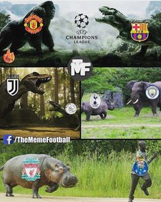 Manchester United Wallpapers 2019 The Champions League Quarter-Finals be like - Manchester United vs. Barcelona Vs Manchester United, Manchester United Wallpaper, Manchester City, Liverpool Champions, Funny Football Memes, Soccer Memes, Funny Soccer, Liverpool Memes, Soccer