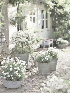 Using outdoor planters is the perfect way to create beautiful container gardens for your front porch, patio or any outdoor space. ideas plants 16 Easy Container Gardening Ideas for Your Potted Plants Diy Garden, Garden Cottage, Garden Landscaping, Garden Bed, Dream Garden, Garden Shade, Porch Garden, Herbs Garden, Garden Shrubs