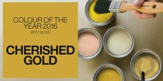 #ColourFutures16 - Okergoed (celestial gold) coulour of the year 16