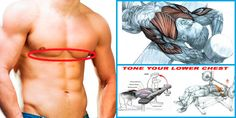 The Best Lower Chest Workout For Defined Pecs Lower Chest Workout, Chest Workout For Men, Chest Workouts, Easy Workouts, Chest Exercises, Fitness Exercises, Good Motivation, Motivation Inspiration, Gym Workout Chart