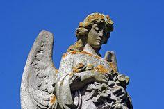 angel by Leo Reynolds, via Flickr