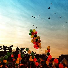 Balloons were everywhere  - @anandaputri- #maastricht #mtricht #univercity #carnival #carnaval