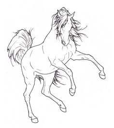 Grown Ups Coloring Pages Of Realistic Horse