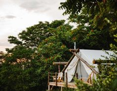 Collective Hudson Valley Ghent, New York Glamping Luxury Travel Trip Ideas tree sky plant leaf flower tourist attraction house outdoor structure spring roof leisure landscape