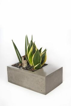 Kevin Wood - v3 Concrete Planter