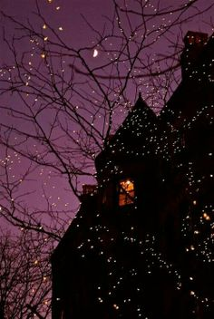 Night Lights, Princeton, New Jersey