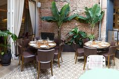 Top 6 restaurantes de moda: con patio colonial en La Contraseña