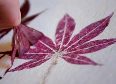 Projects: Hammered Flower + Leaf Prints
