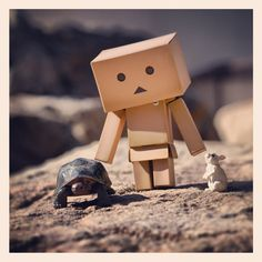At the Zoo with Danbo 5x5 prints by TOYPHOTOGRAPHY on Etsy, $25.00