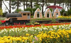 Blumengarten- #AsiaticaReisen