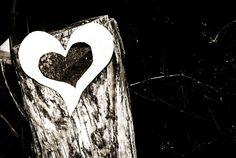 Heart photographer Lana Paulsen