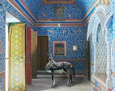 Karen Knorr - Paris Photo Grand Palais