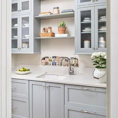Blue Butler Pantry Cabinets with Gray Quartz Countertops