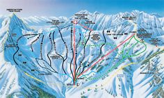 Snowbird Ski and Summer Resort Mineral Basin Trail Map Oh The Places You'll Go, Places Ive Been, Snowbird Utah, Cottonwood Canyon, Trail Maps, Need A Vacation, Snow Leopard, Skiing, Summer