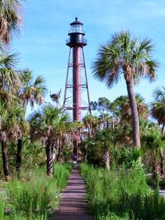 The lighthouse at Anclote Key State Park off the coast of Tarpon Springs, Florida. A ferry service can help you get there.