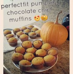 Pumpkin Chocolate Chip Muffins shared by km_tiubride! Make the Chocolate Zucchini Bread recipe in the Frisky Fall Edition of your Tone It Up Nutrition Plan. Substitute the zucchini with pumpkin and use vanilla Perfect Fit Protein instead of chocolate!