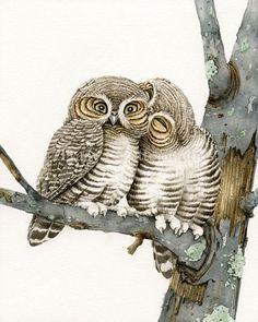 Owl Smooches -