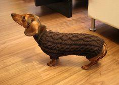 Free knit dog sweater pattern.