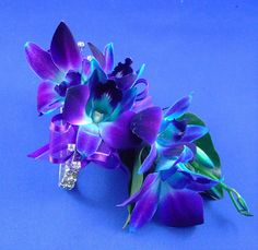 blue orchid corsage | Blue Orchid Wrist Corsage | Flickr - Photo Sharing!
