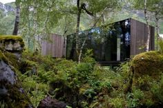Modern meets nature. This would be great if the walls war patina'ed steel with the glass