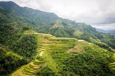 Sometimes, Manila is just a litte too sun-scorched. When it gets too hot, we can count on these cold places in the Philippines to cool us down. Palawan Tour, Banaue Rice Terraces, Mactan Island, Coron Island, Mountain Bike Tour, Sailing Trips, Hiking Tours, Local Tour, Helicopter Tour