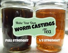 Make Worm Castings Tea for natural gardening - PreparednessMama