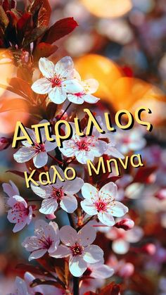 Greek Quotes, Wish, Diy Crafts, Spring, Party, Movies, Films, Make Your Own, Parties
