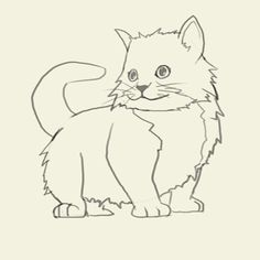 how to draw kitten learn to draw a kitten step by step images along with