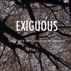 Exiguous  igˈzigyo͞oəs, ikˈsig-  mid 17th century Latin origin #beautifulwords #wordoftheday #cherryblossoms #Korea #Spring