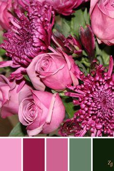 ZJ Colour Palette 589 #colourpalette #colourinspiration