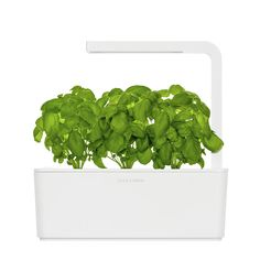 Click and Grow Indoor Garden
