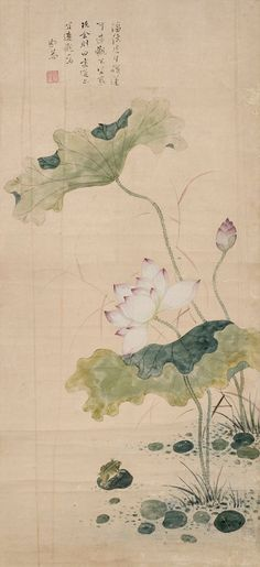 (Korea) 향원익청 by Gang Se-hwang aka Poam. color on paper. Lotus Painting, Lily Painting, Japan Painting, Korean Painting, Chinese Painting, Oriental, Bio Art, Art Asiatique, Korean Art
