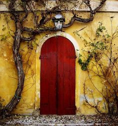 red door on yellow wall