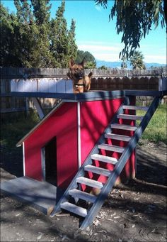 Dog House with Viewing Deck - OBN members can get free plans to this