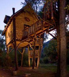 Photo : La cabane vue de devant