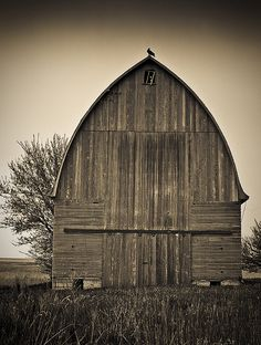 This fairly unusual combination Corncrib/Barn (and Vulture residence) is located in Calhoun County, Iowa.