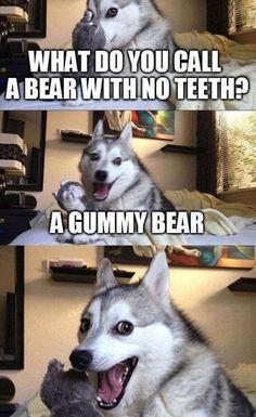 New Funny Puns Jokes Humor Laughing Harry Potter Ideas Dog Jokes, Puns Jokes, Corny Jokes, Funny Animal Jokes, Funny Dog Memes, Funny Animal Pictures, Cute Funny Animals, Funny Relatable Memes, Animal Memes