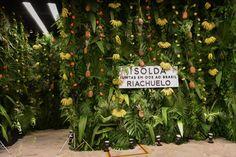 Doris Bicudo comenta sua experiência no evento de lançamento da coleção da Riachuelo com a marca Isolda.