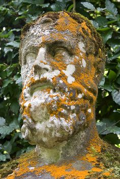 Lichen and moss covered statue, Chatsworth House Gardens. | Flickr - Photo Sharing!