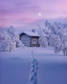 Find images and videos about winter, snow and landscape on We Heart It - the app to get lost in what you love. Winter Szenen, Winter Cabin, Winter Time, Snow Cabin, Winter Photography, Nature Photography, Snow Scenes, All Nature, Winter Pictures