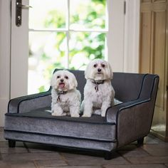 Mid Century Modern Pet Bed - Grey Velvet $179.99 (Ignore the dogs -- I can totally see my cat on this.)